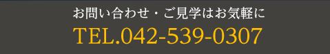 042-539-0307